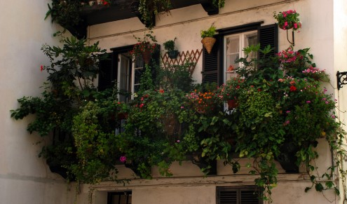 balcony with flowers
