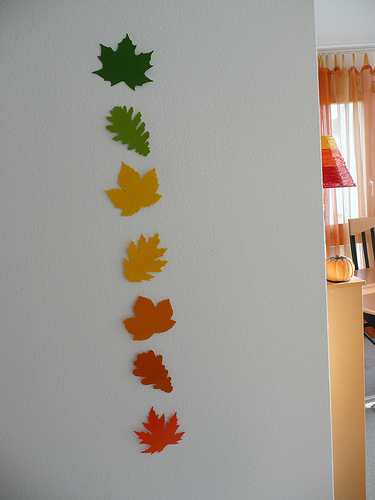 Wall Decoration Ideas