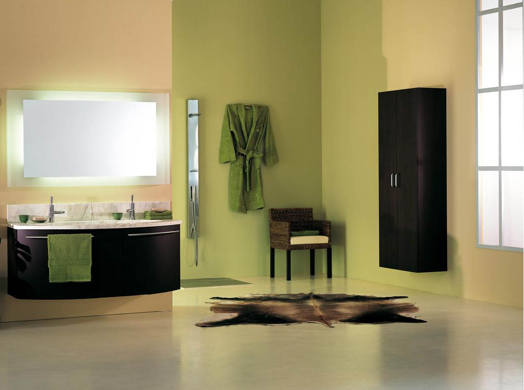 Popular Bathroom Colors 2010