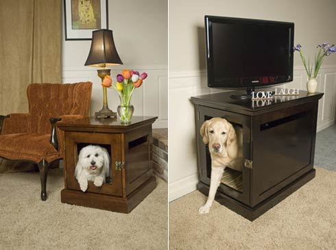 ideal place for your pet