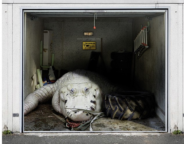 amazing garage door art