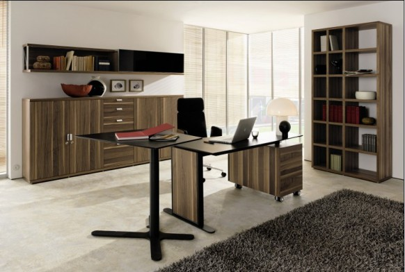 http://www.home-designing.com/wp-content/uploads/2009/08/home-office-8-582x392.jpg