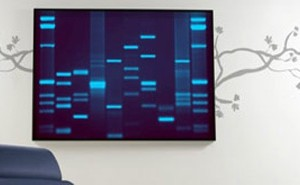 dna-art