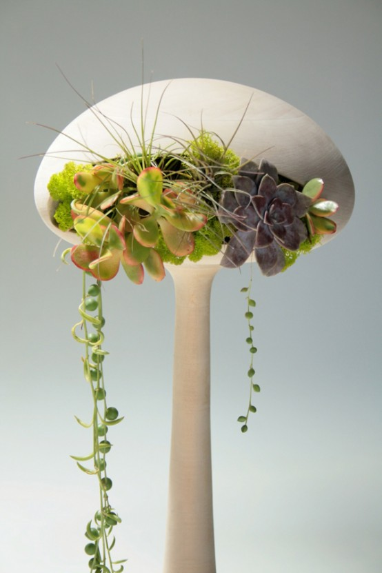 Indoor plants that purify air in living spaces - Cool office plants ...