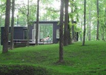 home-in-forest