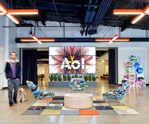 AOL OFFICE AND DOG