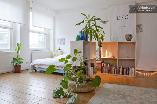 "The design also has a bit of a theme to it, since the bookshelves and floor are light, natural colored wood and real, green plants are also used as ""natural"" dividers."