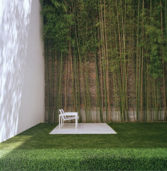 urban garden with bamboo