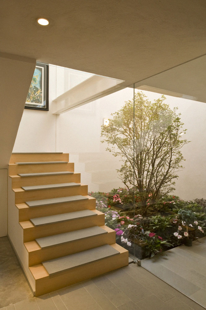 Staircases on pinterest staircase design modern for Interior courtyard design ideas
