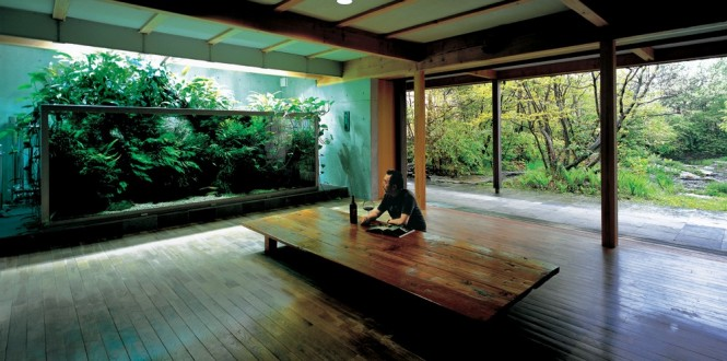 These dreamlike underwater landscapes come to us courtesy of Takashi Amano, one of the most influential people in the field of freshwater aquascaping, and his firm, Aqua Design Amano.