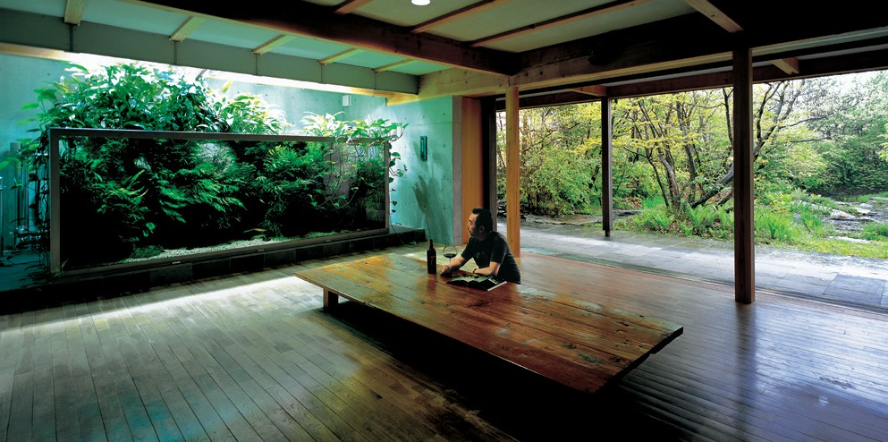 ... the field of freshwater aquascaping, and his firm, Aqua Design Amano