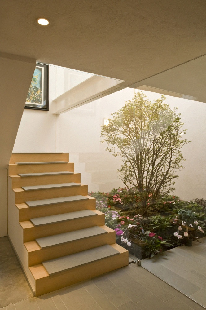 6 Interior Courtyard with tree
