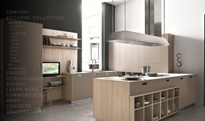 beech modern kitchen