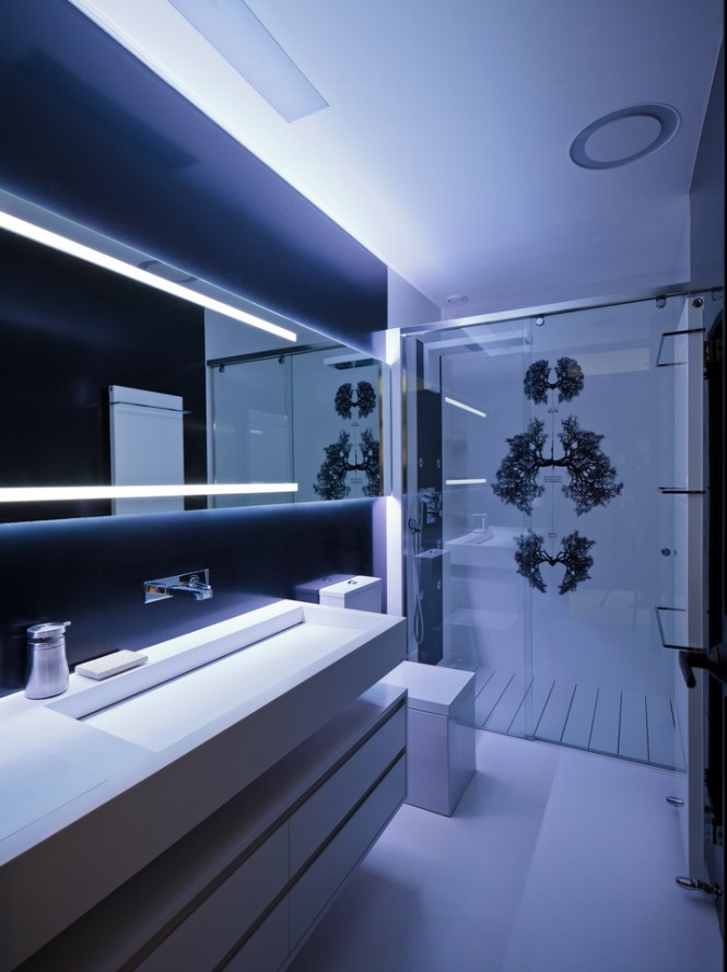 A long basin, storage unit, and illuminated vanity mirror run parallel along one wall of the main bathroom, towards a frosted shower screen that is printed with intriguing scientific illustrations, which compliment the cool clinical feel of the decor.