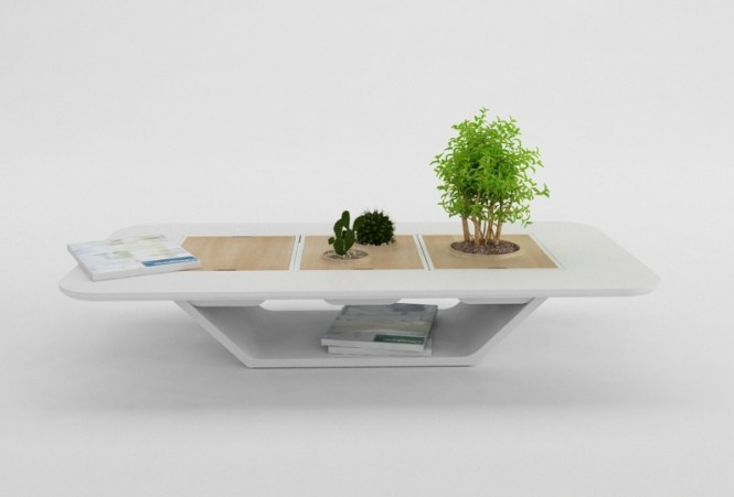 We love this concept planter table, it provides the perfect social spot for your leafy companion, and the tray pops out for easy pruning.