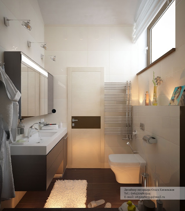Contemporary bathroom layout for Bathroom knick knacks