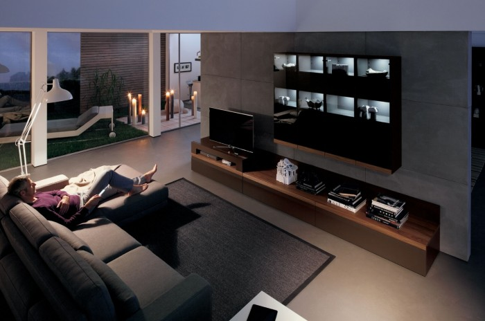 modern living room with dark wood media center