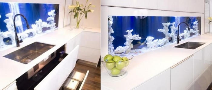 glass aquarium backsplash