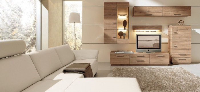 modern living room woods