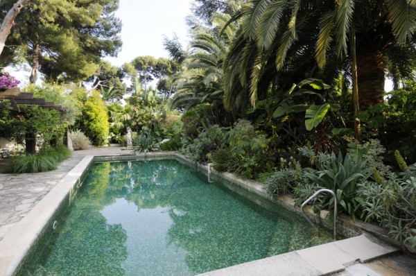 Pool landscape surrounded by greenery