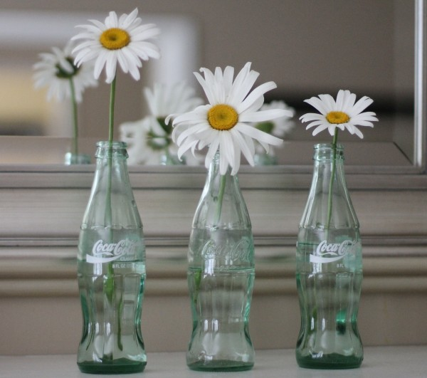coke bottles white daisies trilogy against mirror