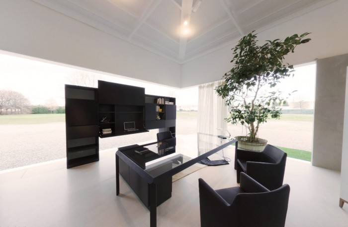 modern black office space with juvenille tree in pot and glass table