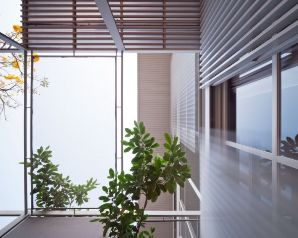 An interior landing is created with walls of glass to stream light and nature indoors.