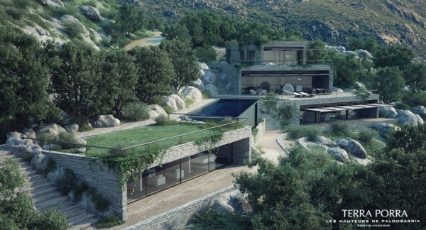modern mountainside villa with turf roofing