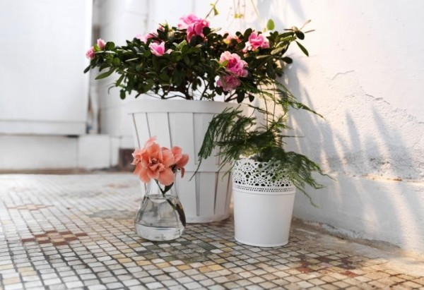 white vintage floral arrangement and pot plants