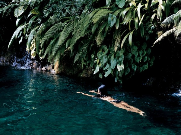 Como shambhala estate bali fresh water creek swimming under hanging foliage
