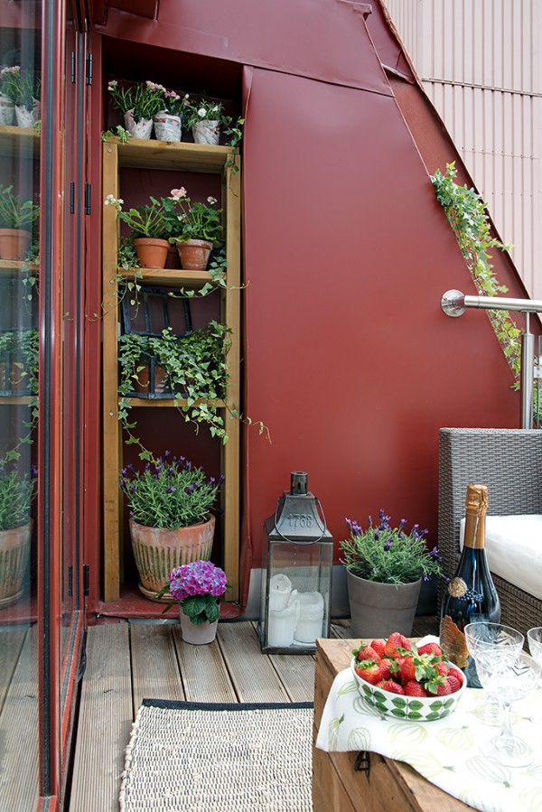 e Urban Apartment with Terrrace- terrace with shelved pot plants and outdoor lounge