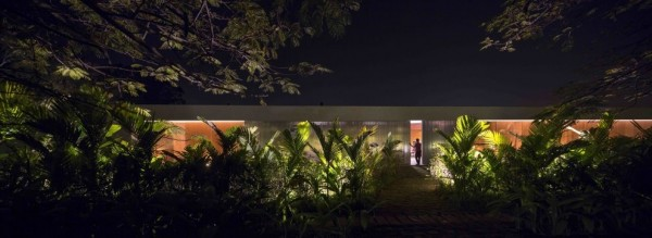Marcio Kogan's Casa Lee Concrete House- palm fern and forest esterior at night