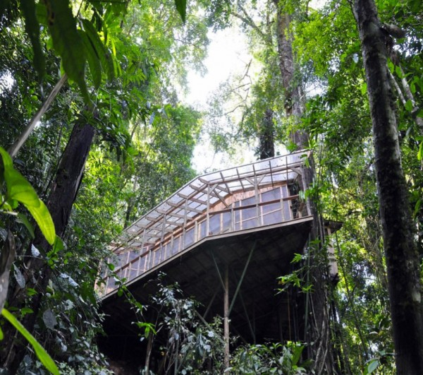 Sustainable treehouse exterior 6