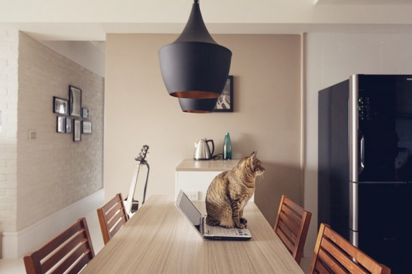 Cat house interior design