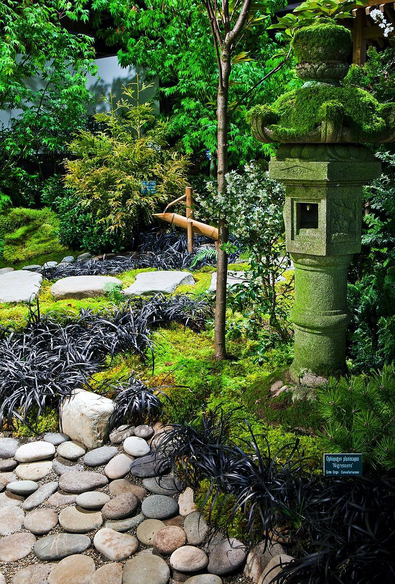 Small japanese garden designs related keywords small for Small japanese style garden
