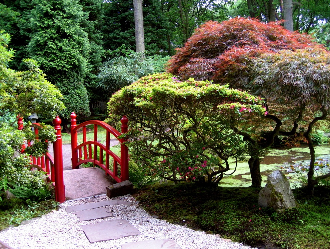 MY DREAM HOUSE: Japanese Gardens: Interior Design Ideas