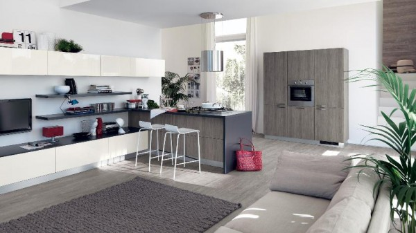 modern kitchen and living room space