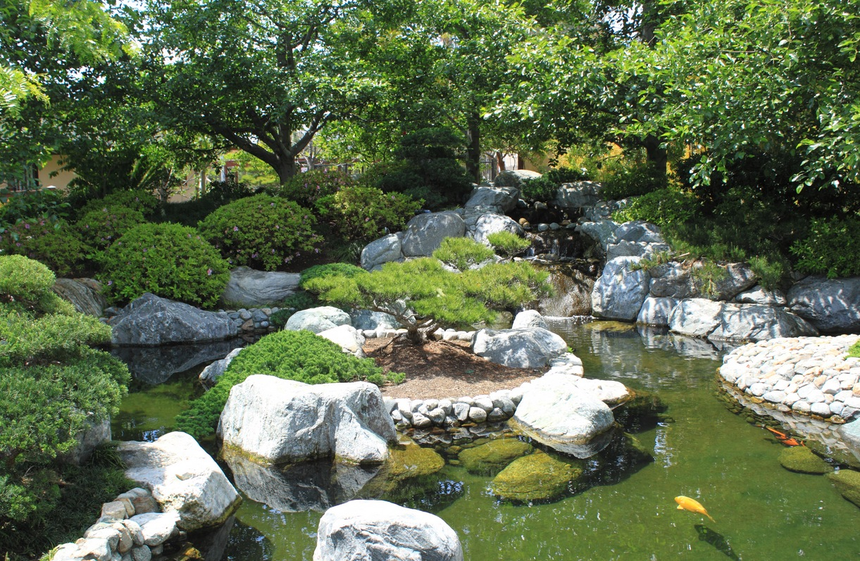 Japanese zen gardens for Pond features