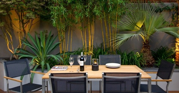 Architectural plants, bamboo and palms looks terrific with up-lighters at the root of the design.